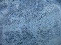 Кучерлинское ущелье. Петроглифы 3